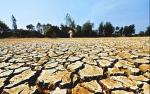 组图:湖北受旱农田已达2042.5万亩 150.1万人饮水困难