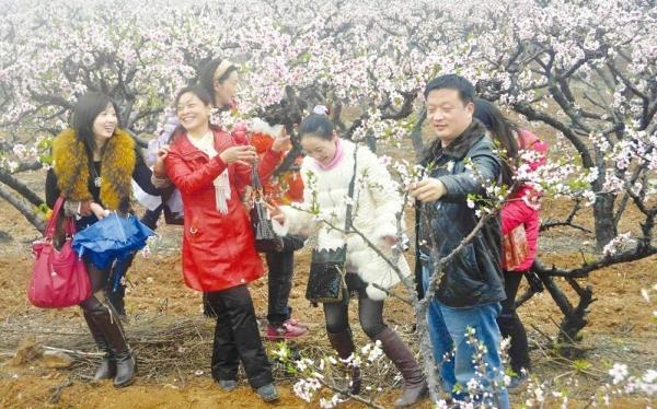 尚市桃花节