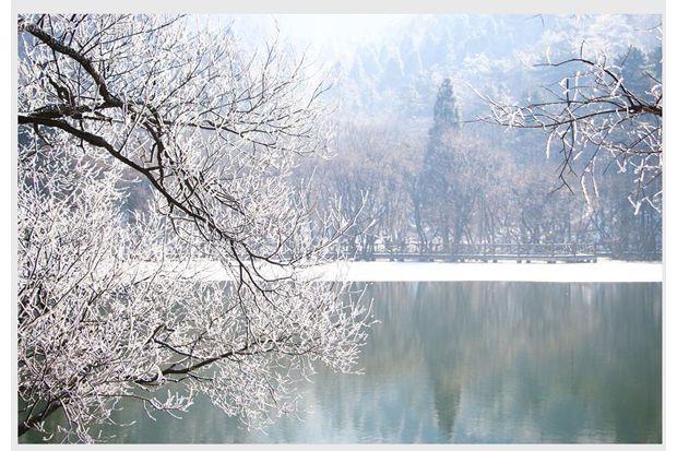 大洪山雪中美景