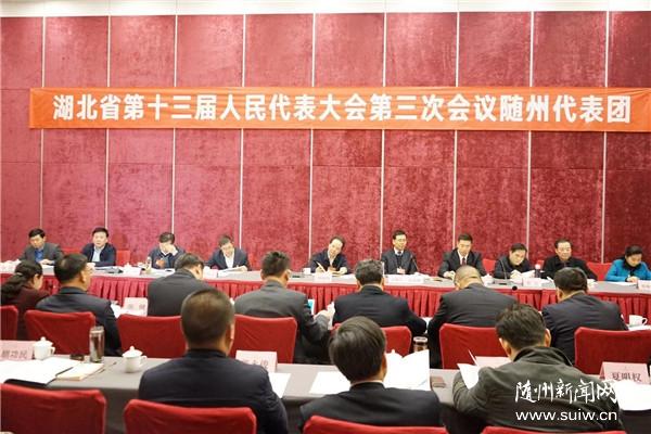 随州代表团审议省《政府工作报告》