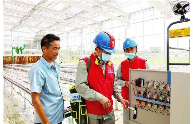"""""""光满""""服务队为特色农业发展提供电力保障"""